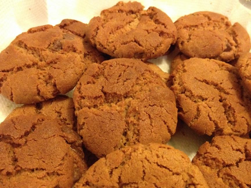 Flourless Peanut Butter Chocolate Cookies-img_5403-jpg