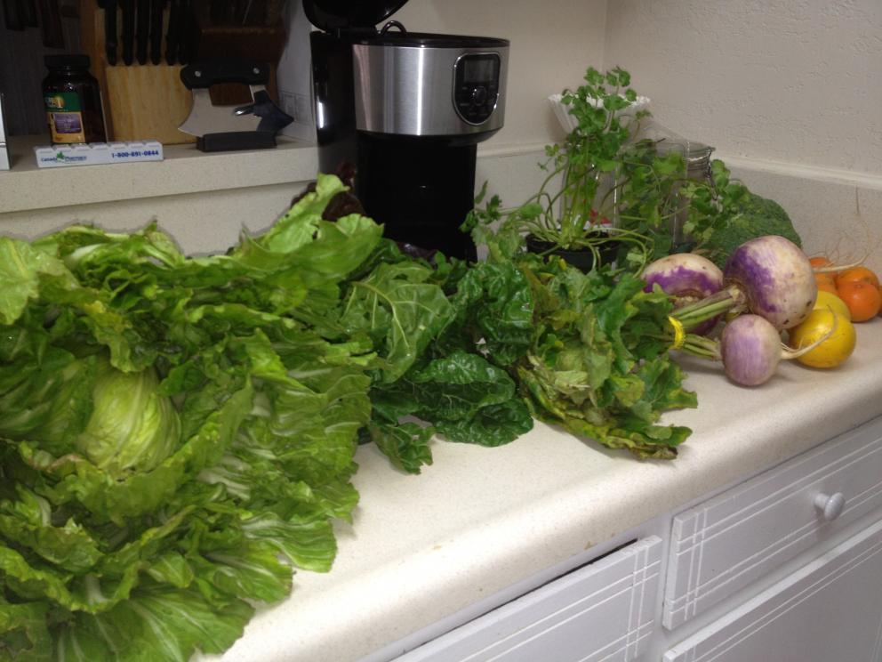 Local, farm-raised, seasonal, organic veggies delivered to my door...-img_3352-jpg