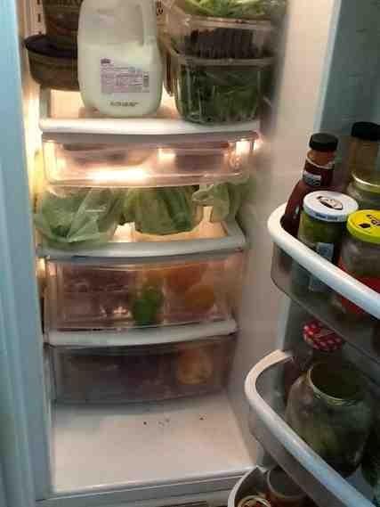 How do you organize your refrigerator?-imageuploadedbytapatalk1370476298-165934-jpg