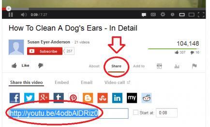 Tutorial: Paste & Share Your YouTube Videos in a Thread-shareyoutube1-jpg